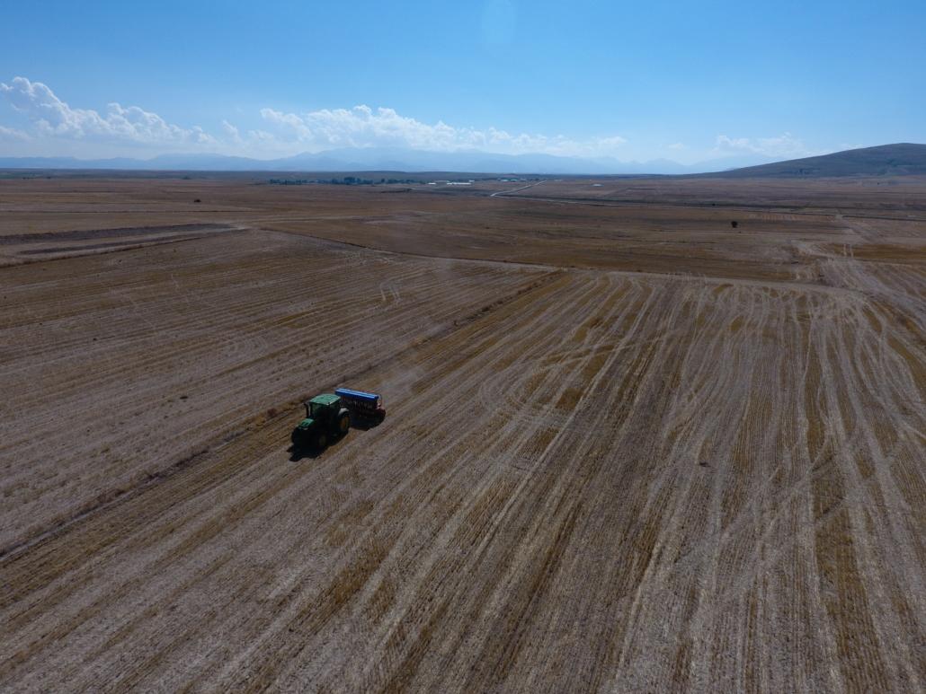 Stubble field / demonstration field view from above. (Turkey)