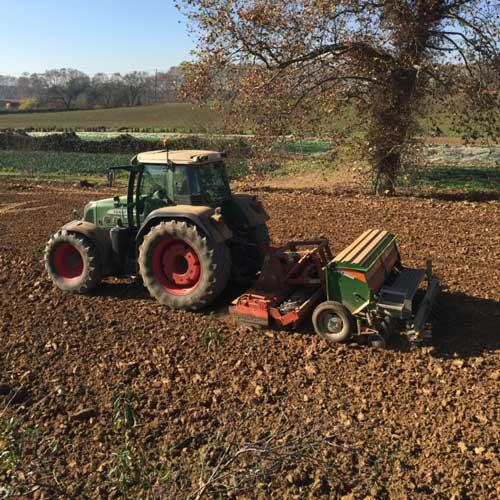 Strategic tillage, crop establishment and soil moisture