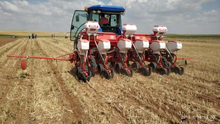 No-till drill row crops. (Turkey)